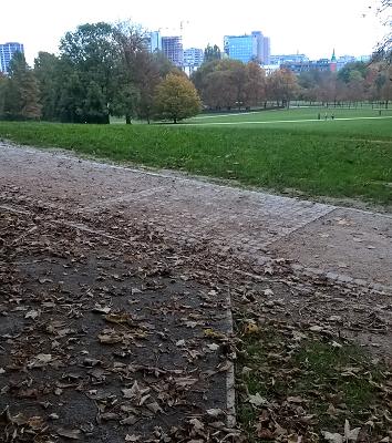 Puistokäytävän kiveys kertoo näkövammaiselle risteyksen sijainnin. Kuva Tivoli-puistosta. Kuva: Kaarina Heikkonen